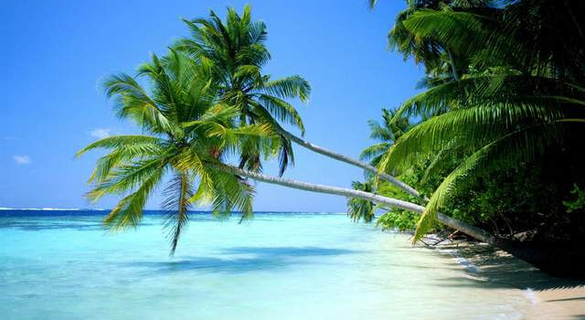 lirik lagu rayuan pulau kelapa