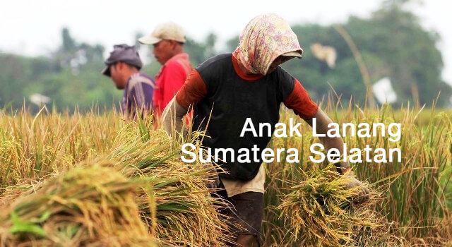 lirik anak lanang sumatera selatan