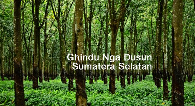 lirik ghindu nga dusun sumatera selatan