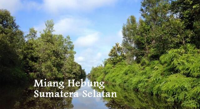 lirik miang hebung sumatera selatan