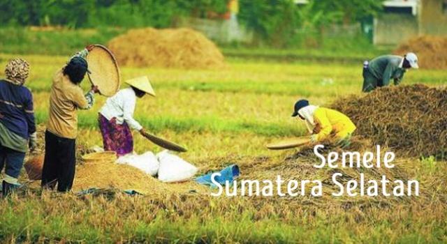 lirik semele sumatera selatan